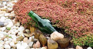 Gartengestaltung_2016_03_29_Maulwurf bekämpfen_Bild 3_fotolia_Gabriele Rohde