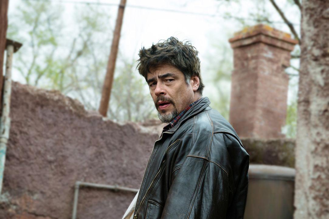Mambrú (Benicio Del Toro) versucht, der Bevölkerung während des Jugoslawienkrieges so gut es geht zu helfen,auch wenn das wegen feindseliger Soldate... - Bildquelle: 2015 Reposado Producciones Cinematográficas, S.L. and Mediaproducción, S.L.U. All rights reserved.