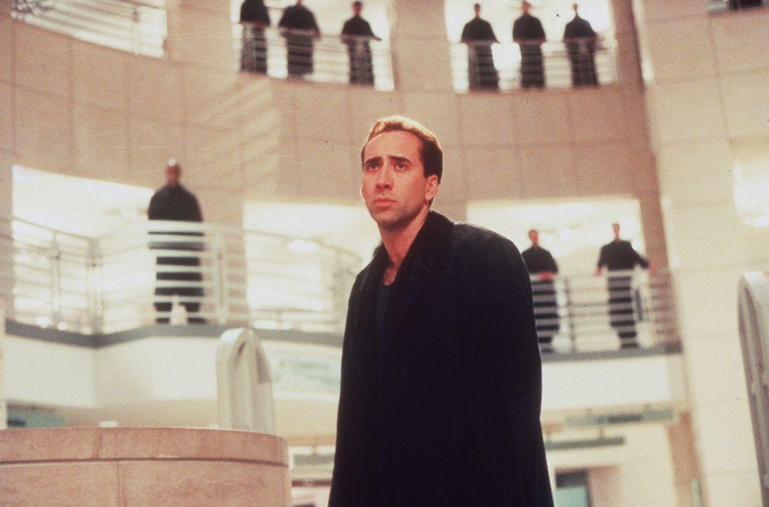 Hilflos muss der Schutzengel Seth (Nicolas Cage, M.) erleben, wie sich die Ärztin Maggie quält. Er sieht ihre Verzweiflung und ihre Trauer, kann s... - Bildquelle: Warner Bros.