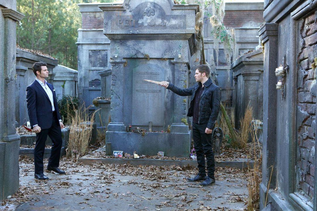 Elijah (Daniel Gillies, l.) will seine Schwester beschützen und stellt sich einem wutentbrannten Klaus (Joseph Morgan, r.) entgegen. Wird ihn das se... - Bildquelle: Warner Bros. Television