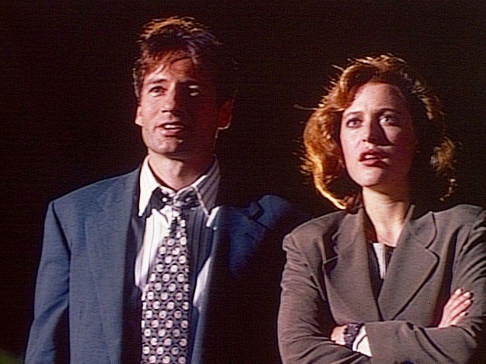 Der FBI-Agent Mulder (David Duchovny, l.) und die FBI-Agentin Scully (Gillian Anderson, r.) beobachten fasziniert unidentifizierbare Flugobjekte übe... - Bildquelle: TM +   2000 Twentieth Century Fox Film Corporation. All Rights Reserved.