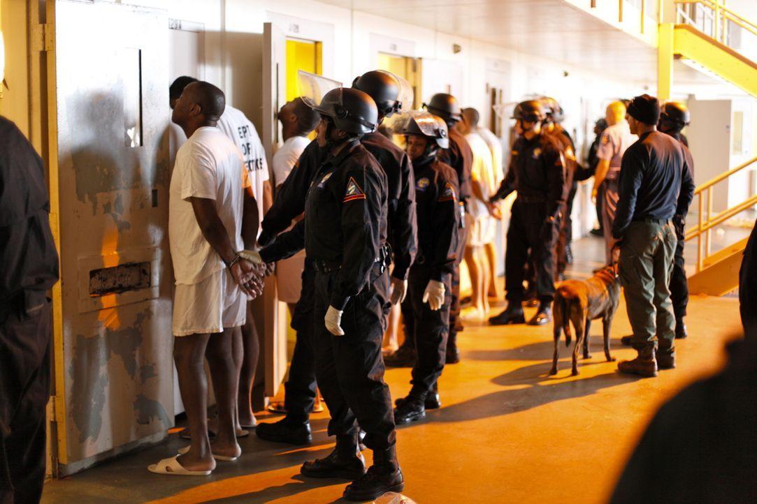 Ein ständiges Hin und Her des Machtgefüges im Smith State Prison sorgt für Anspannung bei Insassen und Wächtern ...