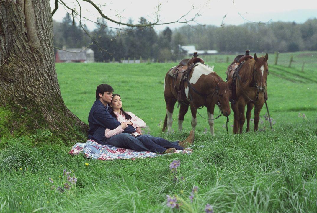 Clark (Tom Welling, l.) und Lana (Kristin Kreuk, r.) überlegen, wie sie Chloe von ihrer Beziehung erzählen sollen ohne sie zu verletzen ... - Bildquelle: Warner Bros.