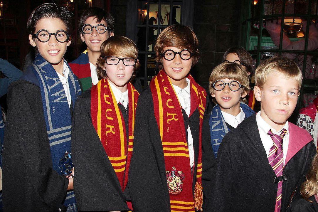 Harry Potter Teil 8