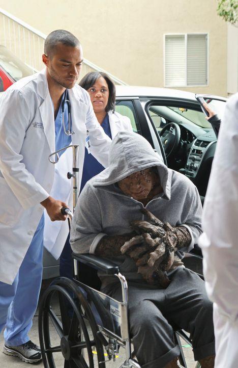 Jerry Adams (Art Chudabala, r.) kommt ins Seattle Grace Hospital und hofft auf Hilfe der Ärzte. Jackson (Jesse Williams, l.) und Miranda (Chandra Wi... - Bildquelle: ABC Studios