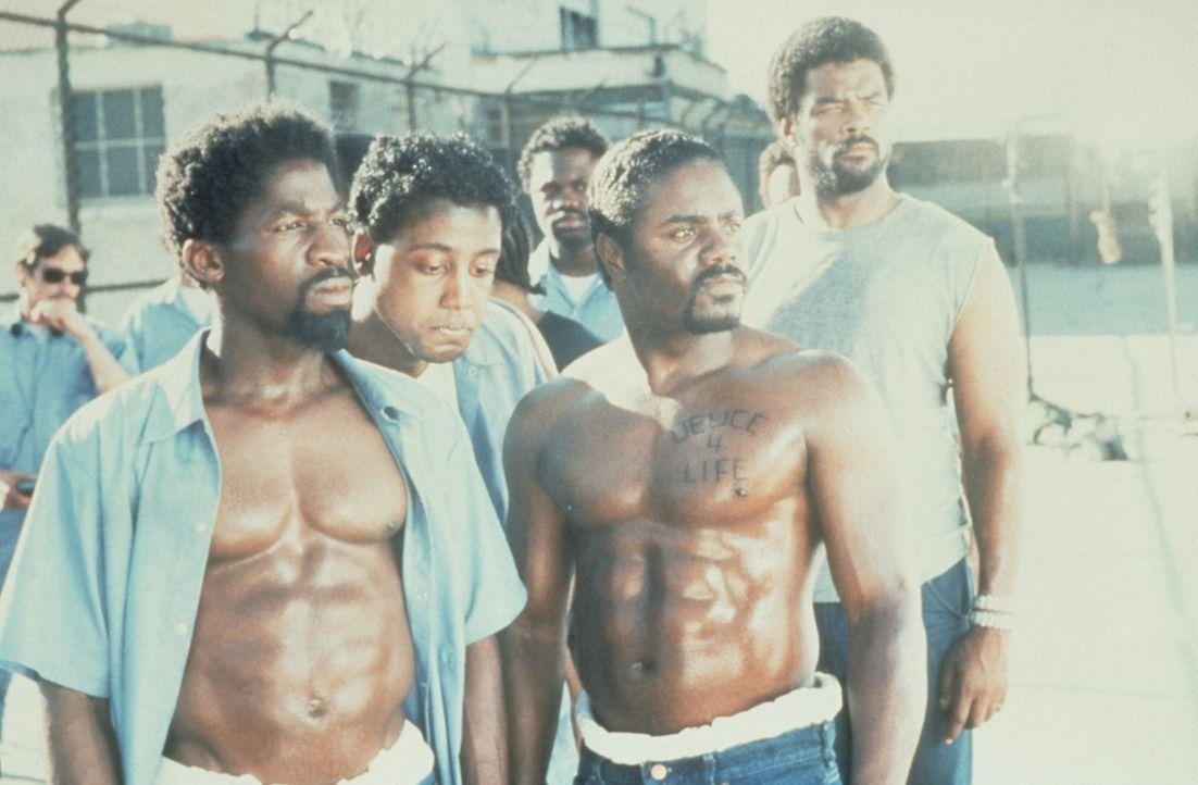 Dank der Hilfe seiner Mitgefangenen lernt Bobby (Glenn Plummer, vorne l.), nicht alle Probleme mit Gewalt zu lösen ... - Bildquelle: Warner Bros.
