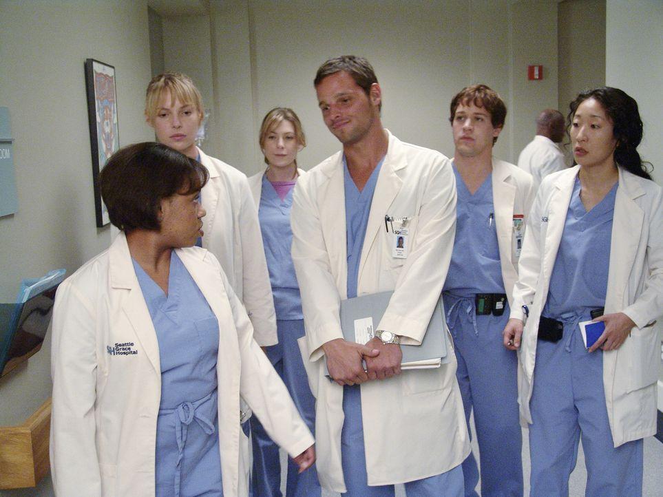Visite im Seattle Grace Hospital: Dr. Miranda Bailey (Chandra Wilson, l.), Izzie (Katherine Heigl, 2.v.l.), Meredith (Ellen Pompeo, 3.v.l.), Alex (J... - Bildquelle: Touchstone Television