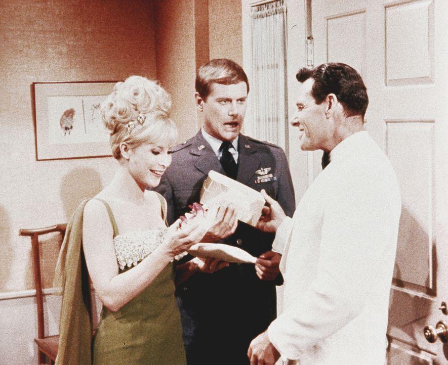 Jeannie (Barbara Eden, l.) zaubert sich einen Verehrer, weil sie sich von Tony (Larry Hagman, M.) vernachlässigt fühlt. - Bildquelle: Columbia Pictures