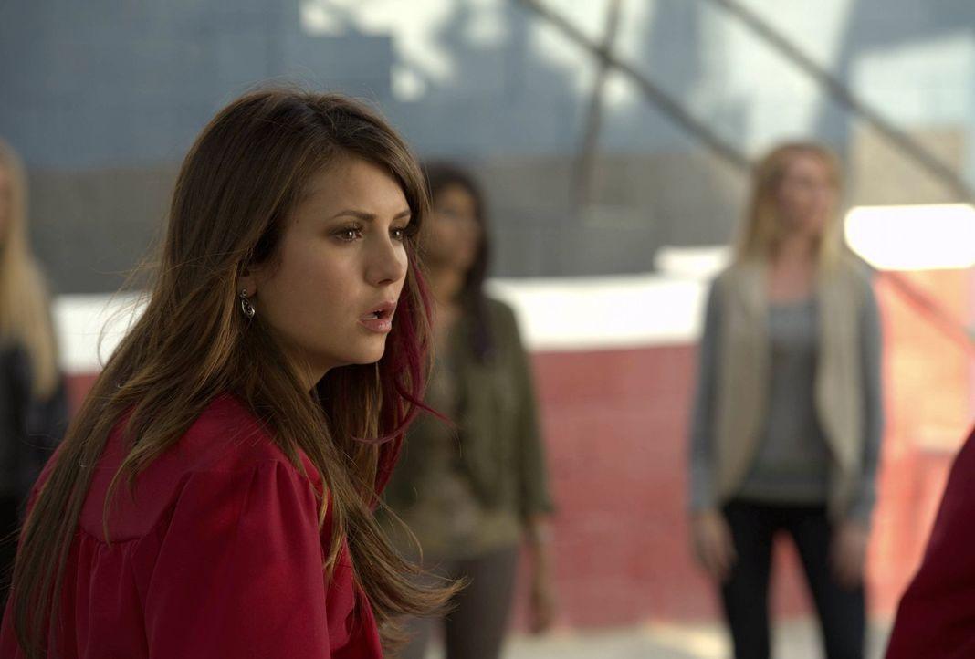 Elena (Nina Dobrev) muss sich gegen Vampirjäger Connor und Katherine verteidigen ... - Bildquelle: Warner Brothers