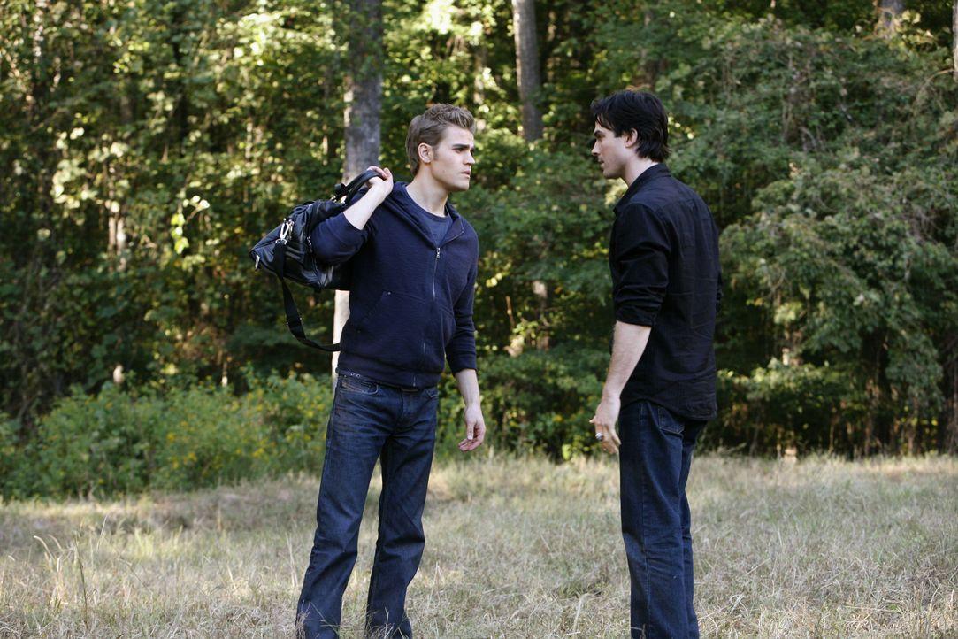 Erklärt Damon (Ian Somerhalder, r.), dass er keinen besseren Grund kenne, als für Elena zu sterben: Stefan (Paul Wesley, l.)... - Bildquelle: Warner Brothers