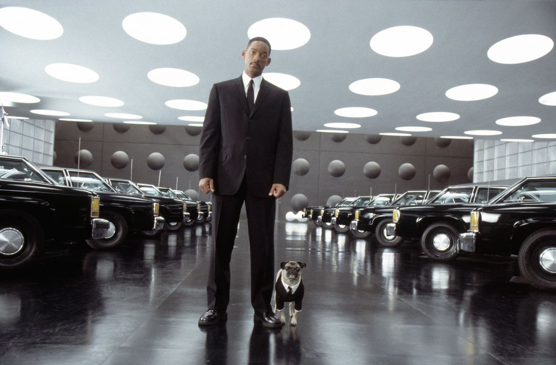 Agent Jay (Will Smith, l.) und Mops Frank (r.) müssen ihre jeweiligen Ex-Partner reaktivieren... - Bildquelle: 2003 Sony Pictures Television International