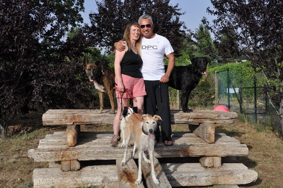 In Spanien macht Cesar Millan (r.) Bekanntschaft mit Jenni Cross (l.) und ihrem Rudel ... - Bildquelle: Belén Ruiz Lanzas 360 Powwow, LLC / Belén Ruiz Lanzas