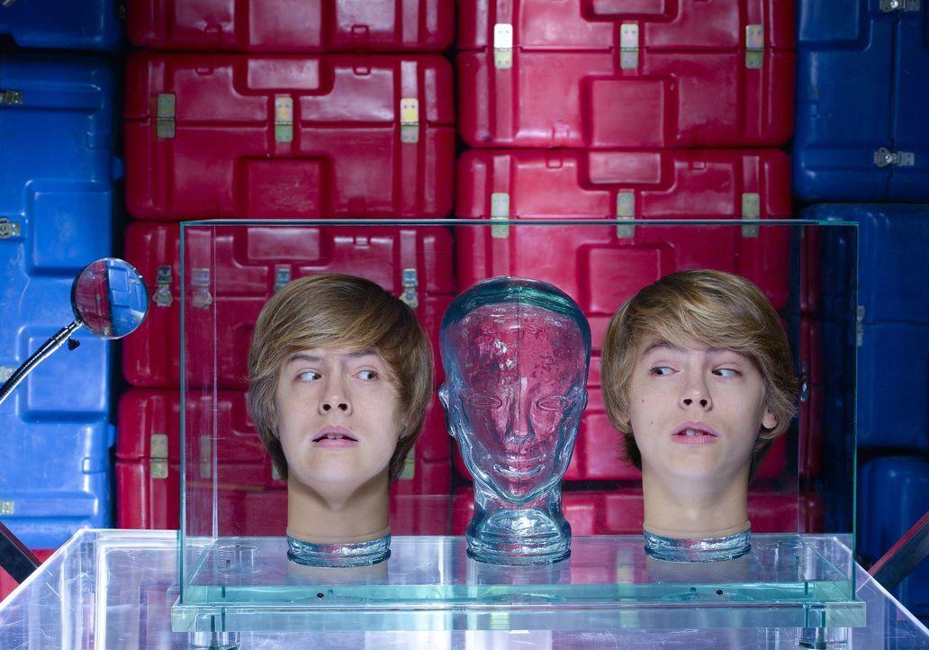 Forschungsziel: Cody (Cole Sprouse, r.) und Zack (Dylan Sprouse, l.) sollen keinen eigenen Willen haben ... - Bildquelle: 2010 Disney Enterprises, Inc. All rights reserved.