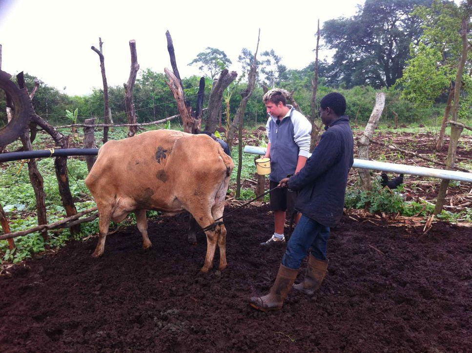Das Leben ist hart und entbehrungsreich in Swasiland. Und genau hier werden die zwei respektlosen Wohlstandskids Chiara und Christian (l.) Fleiß un... - Bildquelle: SAT.1