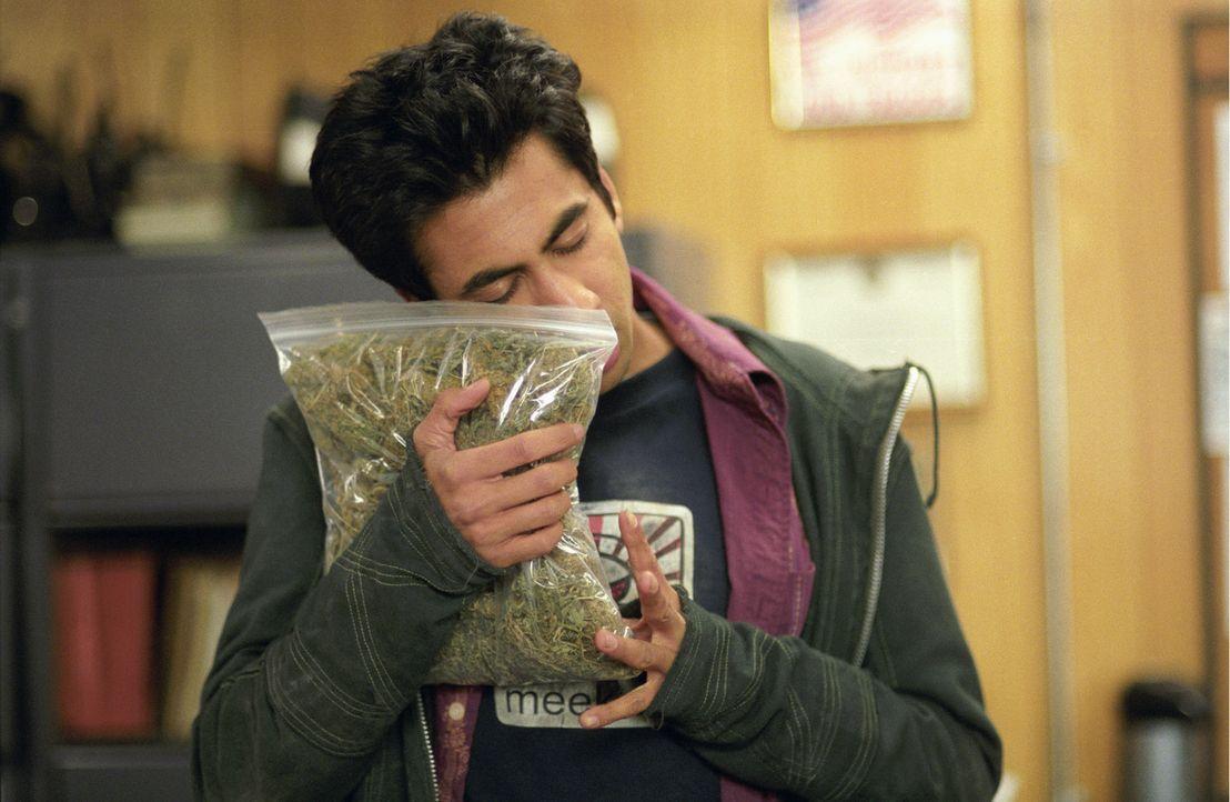 Neben Mädels und Partys interessiert sich Kumar (Kal Penn) nur noch für eines: Marihuana! Eines Tages begibt er sich auf einen Trip, der sein Lebe...