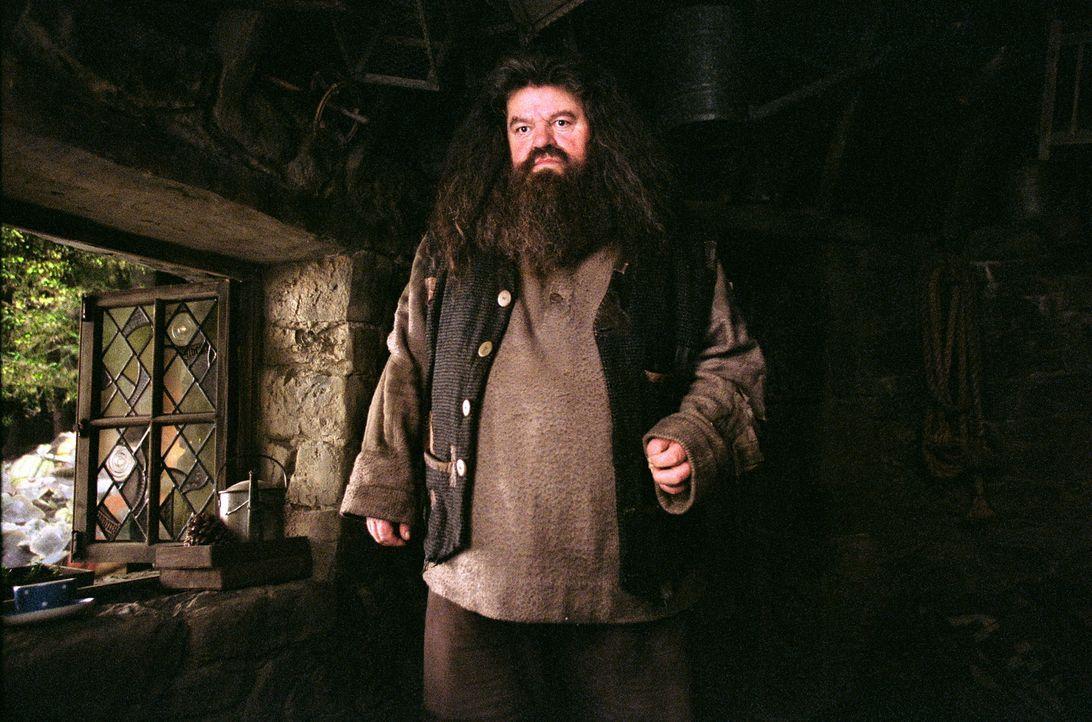 Neuer Lehrer in Hogwarts: Hagrid (Robbie Coltrane) ... - Bildquelle: Warner Television