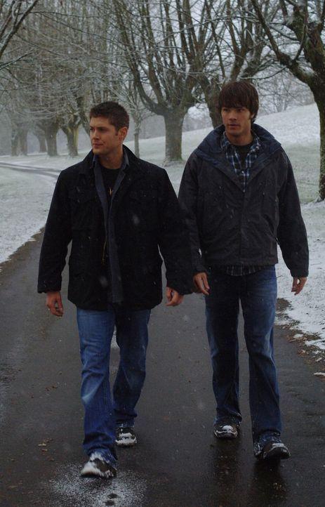 Sam (Jared Padalecki, r.) und Dean (Jensen Ackles, l.) gehen mysteriösen Morden nach ... - Bildquelle: Warner Bros. Television