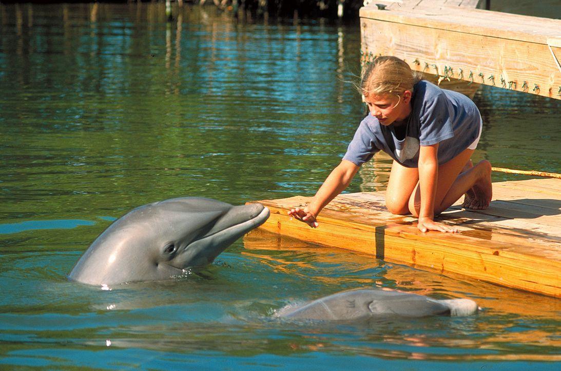 Nach und nach öffnet sich die schwer traumatisierte Nina (Louisa Herfert) den Annäherungsversuchen des Delfins Domino. Doch dann beobachtet sie, wie... - Bildquelle: Leslie Haslam ProSieben