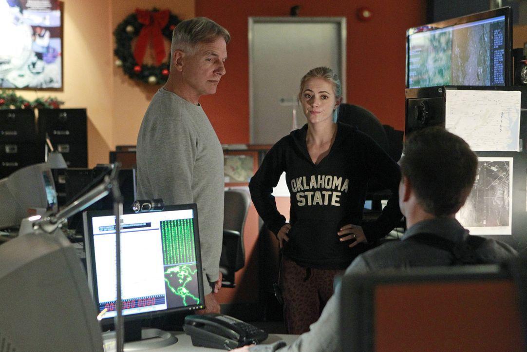 Müssen in einem Hackerangriff ermitteln: Gibbs (Mark Harmon, l.), Bishop (Emily Wickersham, M.) und Tony (Michael Weatherly, r.) ... - Bildquelle: CBS Television
