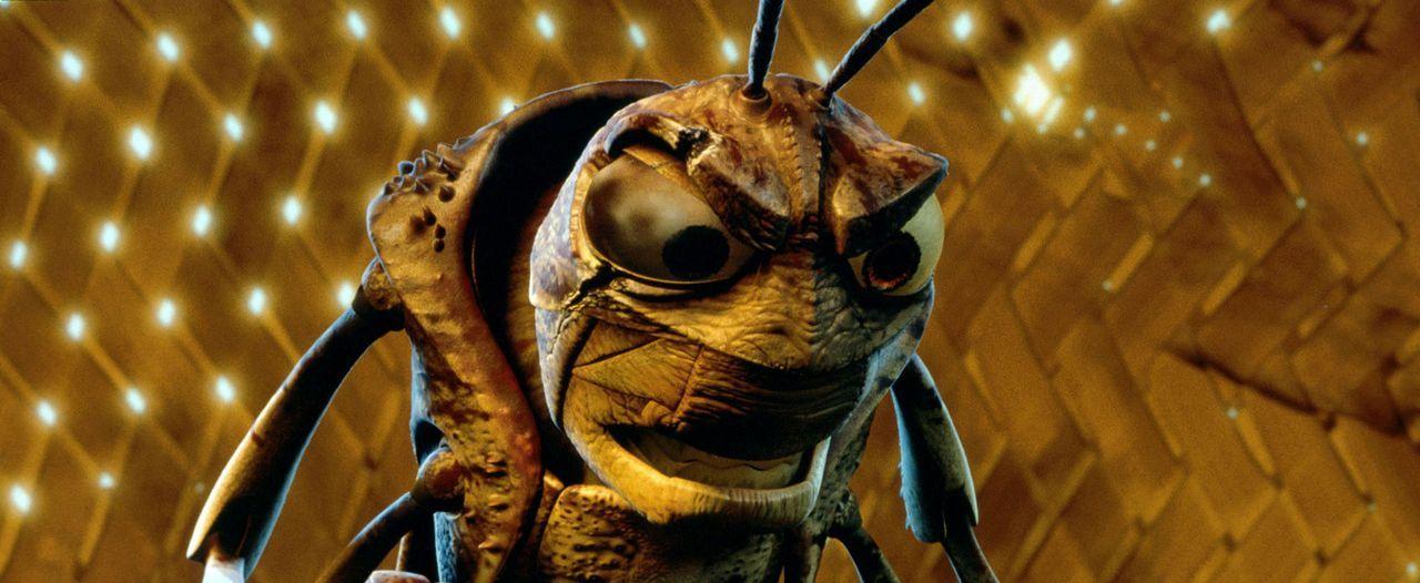 Die Ameiseninsel bekommt Besuch von Hopper und seiner gefräßigen Grashüpfer-Bande, die ihren jährlichen Futter-Tribut, eine Art Schutzgeld, einf... - Bildquelle: Disney/Pixar
