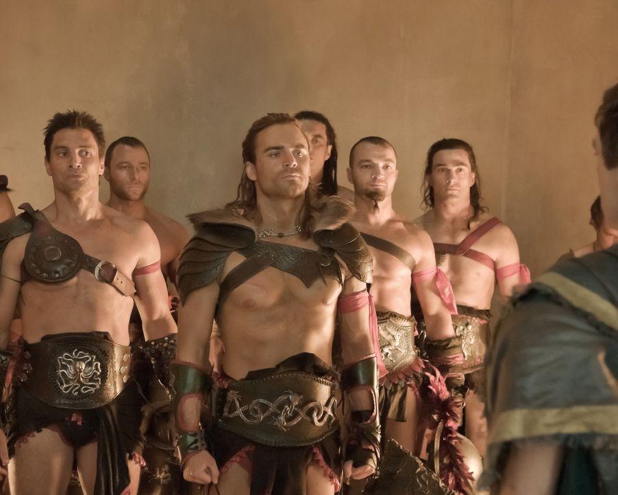 Keine Gnade und kein Erbarmen werden gewährt. Die Gladiatoren von Solonius und Batiatus treten in der neuen Arena gegen einander an: Crixus (Manu B... - Bildquelle: 2010 Starz Entertainment, LLC
