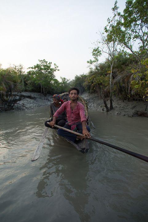 Die letzte Folge der Doku-Reihe führt zu den Lebensräumen, die von einzelnen Kreaturen beherrscht werden, wie die größte Höhle Borneos, den indische... - Bildquelle: 2015 BBC