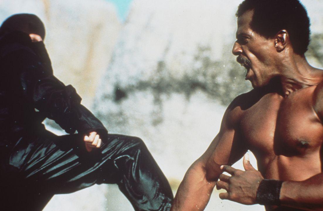 Mutig wehrt sich der Elitekämpfer Curtis Jackson (Steve James, r.) gegen eine Armee von willenlosen Soldaten ... - Bildquelle: Cannon Films
