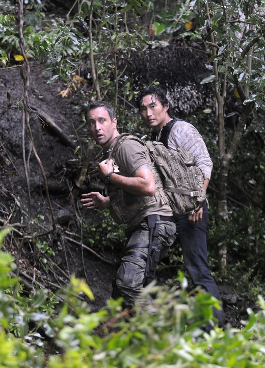 Eine wichtige Zeugin eines bedeutsamen Mordprozess ist verschwunden. Steve (Alex O'Loughlin, l.) und Chin (Daniel Dae Kim, r.) müssen in den Dschung... - Bildquelle: TM &   2010 CBS Studios Inc. All Rights Reserved.