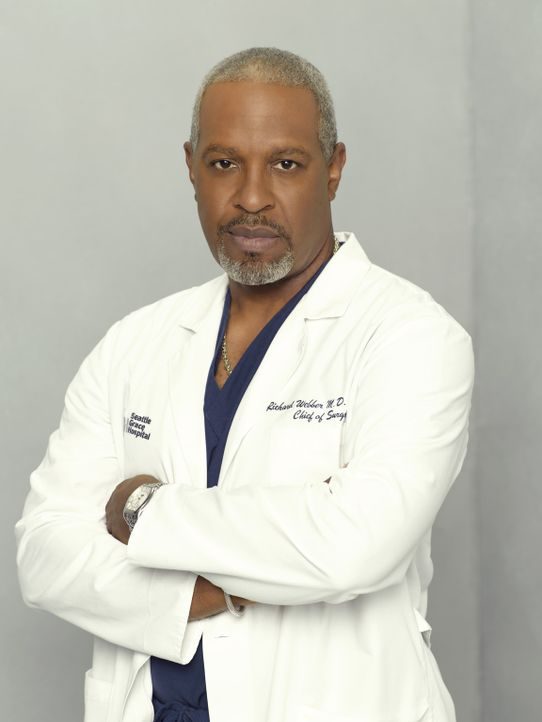 (5. Staffel) - Halbgott in weiß: Dr. Richard Webber (James Pickens, Jr.) ... - Bildquelle: Touchstone Television