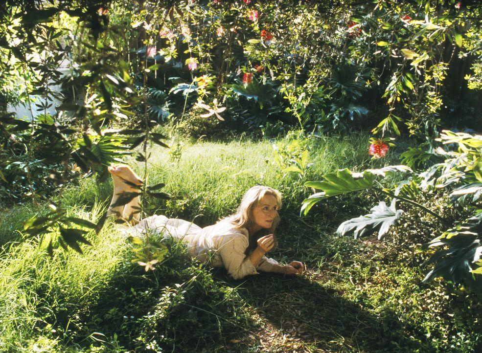 Romanautorin Susan Orlean (Meryl Streep) verbringt viel Zeit mich Laroche, einem Orchideenzüchter, und stellt dabei fest, dass ihr eigenes Leben ni... - Bildquelle: 2003 Sony Pictures Television International