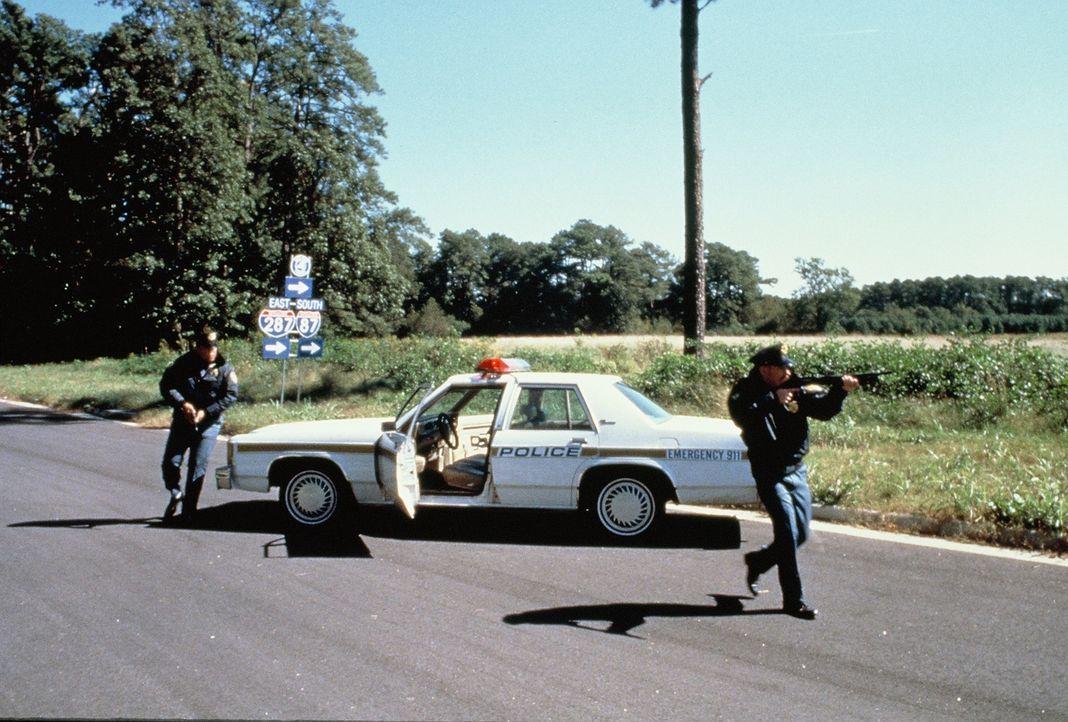 Als ab Sommer 1990 rund um Wien acht Frauenleichen gefunden werden, ist die österreichische Polizei ratlos und wendet sich an das FBI. Die Agenten f... - Bildquelle: New Dominion Pictures, LLC