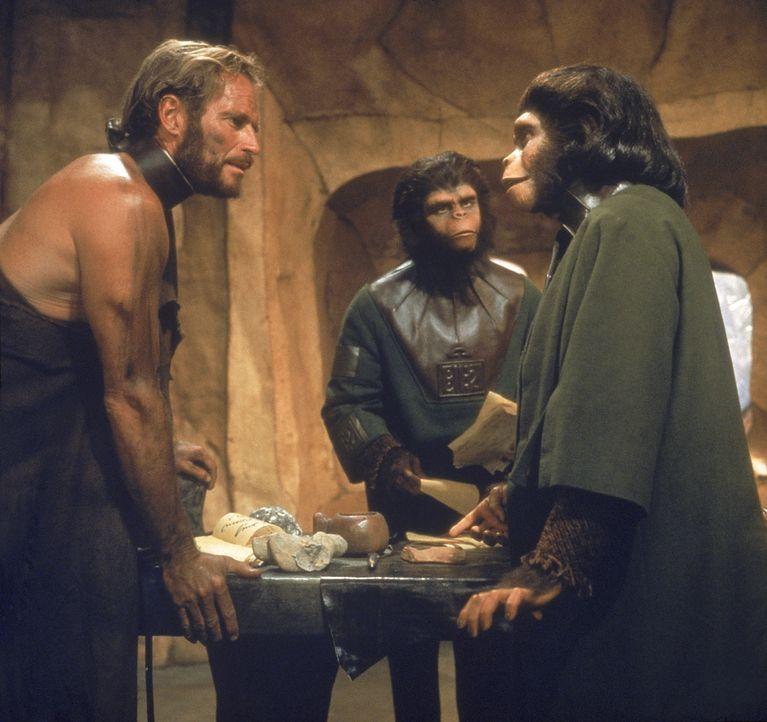 Nach einiger Zeit kann Taylor (Charlton Heston, l.), das Vertrauen von Dr. Zira (Kim Hunter, r.) und Dr. Cornelius (Roddy McDowell, M.) gewinnen und... - Bildquelle: 20th Century Fox International Television