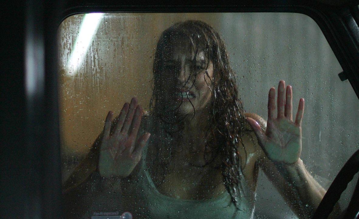 Gerät mitten in das Grauen, dass ihre Schwester scheinbar in den Selbstmord getrieben hat: Ariel Wolfe (Amanda Righetti) ... - Bildquelle: 2006 Warner Brothers