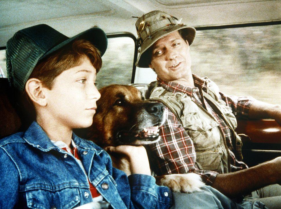 Gemeinsam mit ihrem Hund Boomer wollen Harvey (Jim Edgcomb, r.) und Larry (Matt Norero, l.) einen Campingurlaub machen. - Bildquelle: Worldvision Enterprises, Inc.