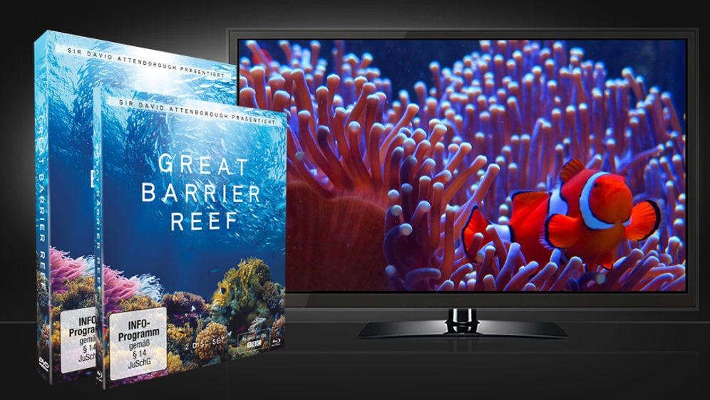 Great Barrier Reef DVD und Blu-ray - Bildquelle: Koch Media Home Entertainment
