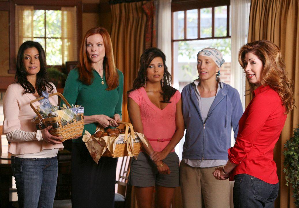 Nachdem sich die Neuigkeit in der Wisterie Lane rumgesprochen hat, dass sich Adam vom Katherine (Dana Delany, r.) getrennt hat, schauen Lynette (Fel... - Bildquelle: ABC Studios