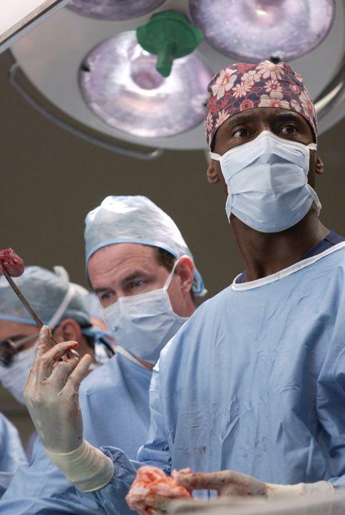 Dr. Burke (Isaiah Washington, r.) macht eine grausame Entdeckung ... - Bildquelle: Touchstone Television