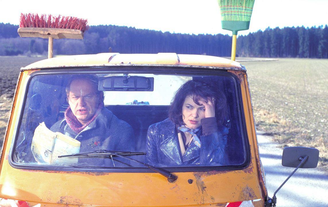 Immer wieder aufs Neue gelingt es dem Handlungsreisenden Mauser (Uwe Ochsenknecht, r.), bei der Karrierefrau Charlotte (Barbara Auer, l.), die eigen... - Bildquelle: ProSieben