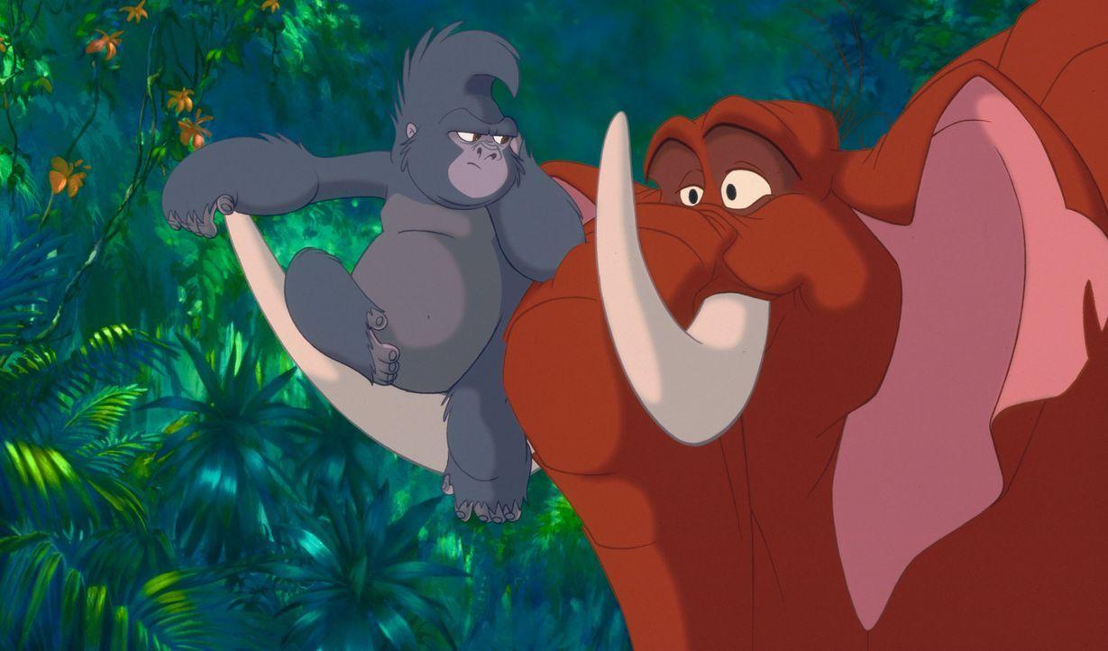 Tarzan findet im Gorillamädchen Terk, l. und dem Elefantenjungen Tantor, r. seine besten Freunde ... - Bildquelle: Edgar Rice Burroughs Inc. and Disney