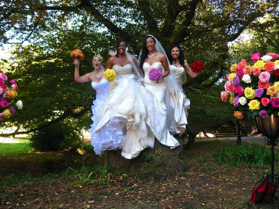 Jede der vier Bräute glaubt, die perfekte Hochzeit organisiert zu haben, doch wer wird auch die Konkurrenz davon überzeugen können: Christa (l.), Ka... - Bildquelle: Richard Vagg DCL