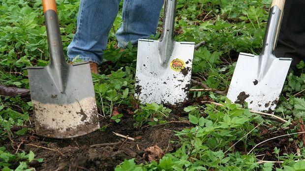 Gartenarbeit  Gartenarbeit im Januar: Neue Vorsätze - SAT.1 Ratgeber