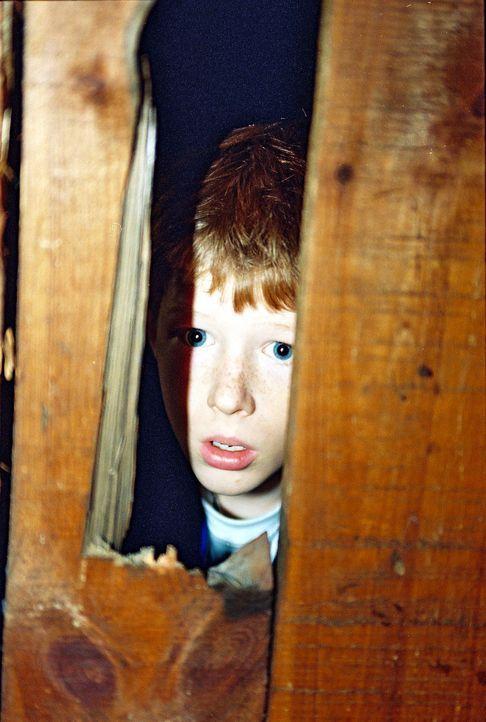 Niko (Maximilian Seidel) beobachtet, wie die Täter an den Tatort zurückkehren, um dem Opfer den endgültigen Garaus zu machen. Vergeblich hatte der J... - Bildquelle: Wolfgang Jahnke Sat.1
