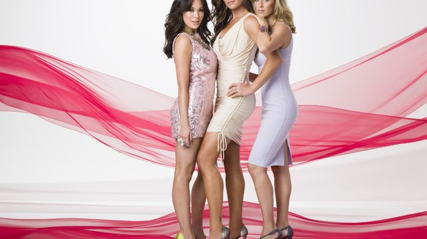 (2. Staffel) - Lipstick Jungle: Wendy (Brooke Shields, M.), Victory (Lindsay...