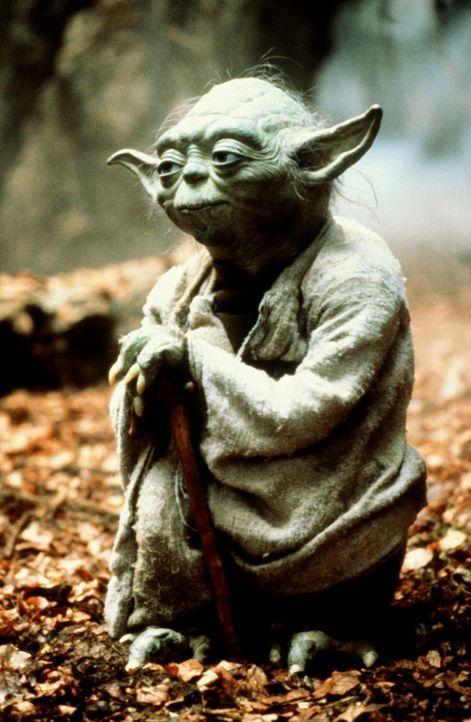Als der Jedi-Meister Yoda (Frank Oz) sein Eremitendasein auf Dagobah aufgibt, wartet auf ihn eine eminent wichtige Aufgabe: er soll den jungen Luke... - Bildquelle: Lucasfilm LTD. & TM. All Rights Reserved.
