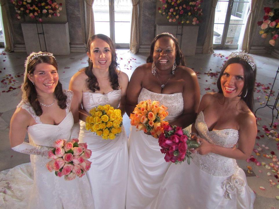 Mit speziellen Effekten wollen Kelly (l.), Erica (2.v.l.), Charelle (2.v.r.) und Liz (r.) überzeugen ... - Bildquelle: 2011 Discovery Communications, LLC