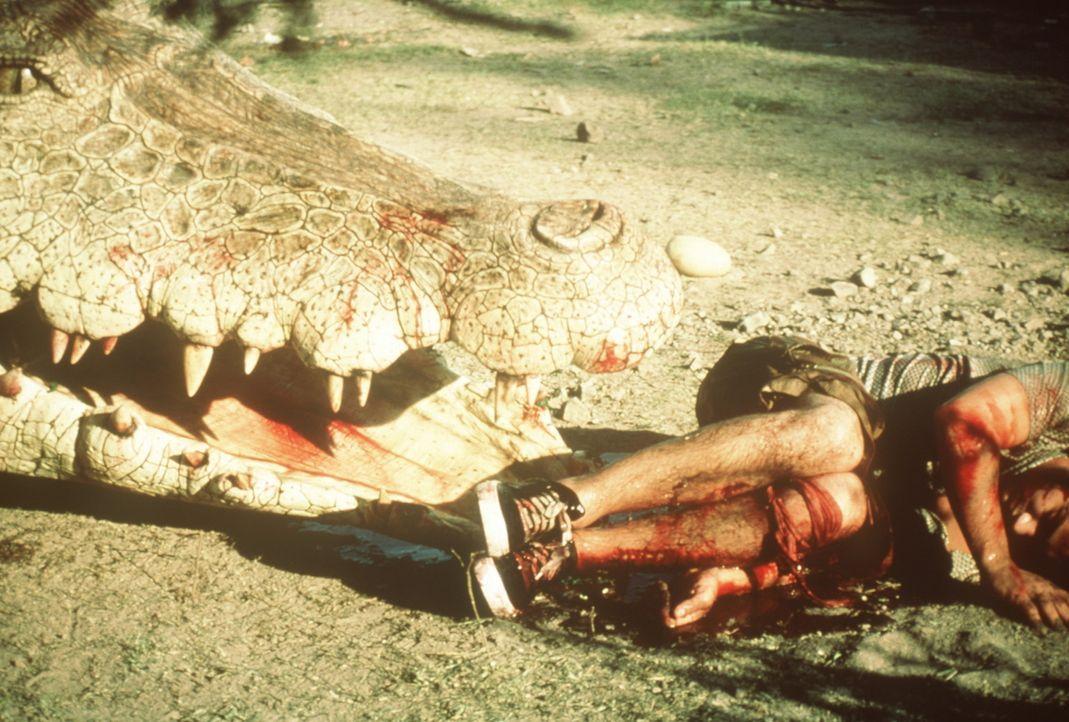 Die aufgebrachte Krokodilmutter kennt keine Gnade ... - Bildquelle: Nu Image