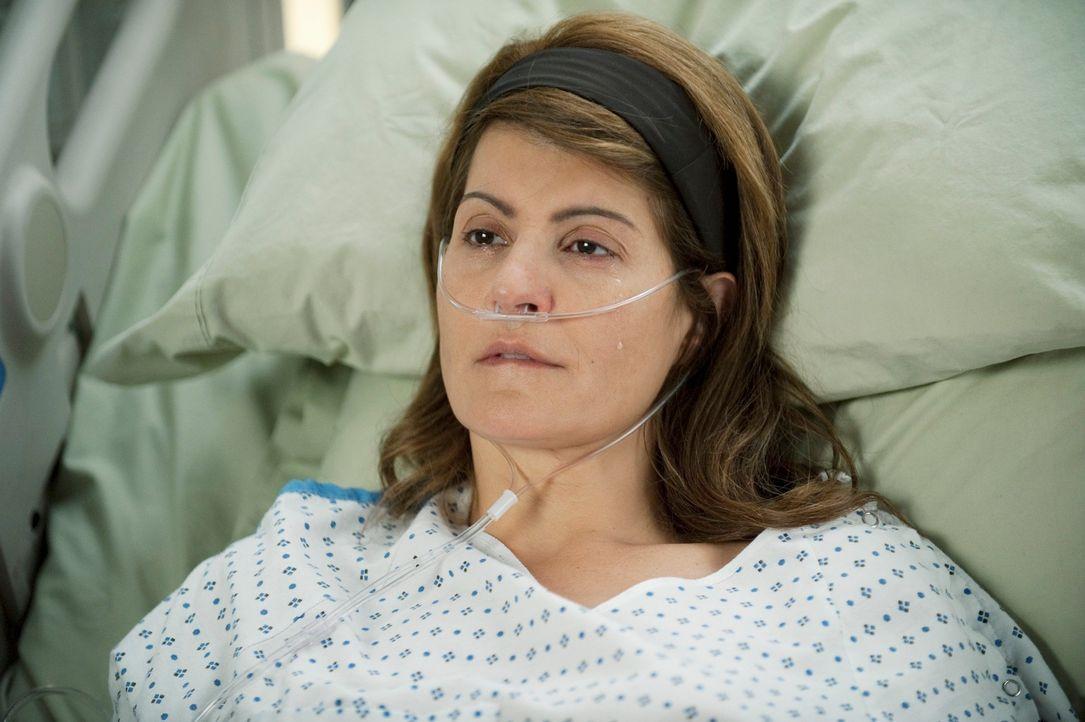 Dr. Webber nimmt seine 10.000 Operation vor. Karen (Nia Vardalos) erhält eine Spender-Leber von ihrer Schwester Marcy ... - Bildquelle: ABC Studios