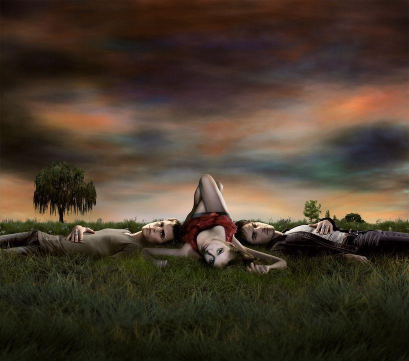 (1. Staffel) - Elena Gilbert (Nina Dobrev, M.) lernt in der High School den mysteriösen Stefan (Paul Wesley, l.) kennen. Als dann noch dessen böser... - Bildquelle: Warner Brothers