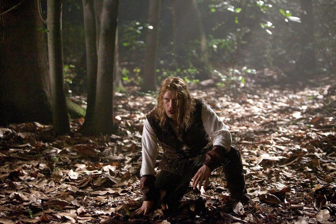 Schon früher konnte Klaus Mikaelson (Joseph Morgan) sein Temperament schwer zügeln, vor allem, weil er nicht nur ein Vampir ist ... - Bildquelle: Warner Bros. Television