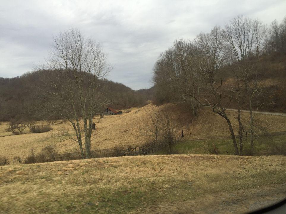 Mark Bowe und die Jungs reisen nach Jane Lew, West Virginia, um das Holz von einem 120 Jahre alten Viehstall zu retten ... - Bildquelle: 2015, DIY Network/Scripps Networks, LLC. All Rights Reserved.
